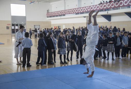 Al evento asistienron más de 300 escolares del Calderón de la Barca