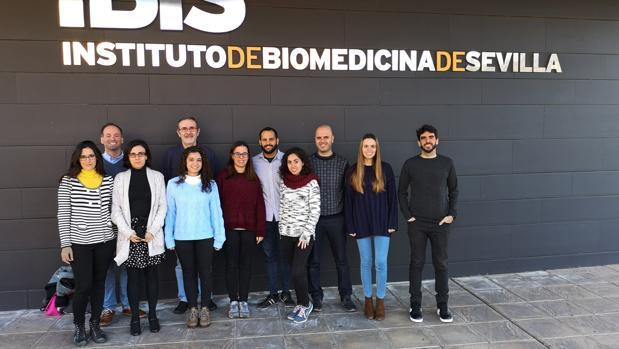Equipo del Instituto de Biomedicina de Sevilla que ha realizado el estudio