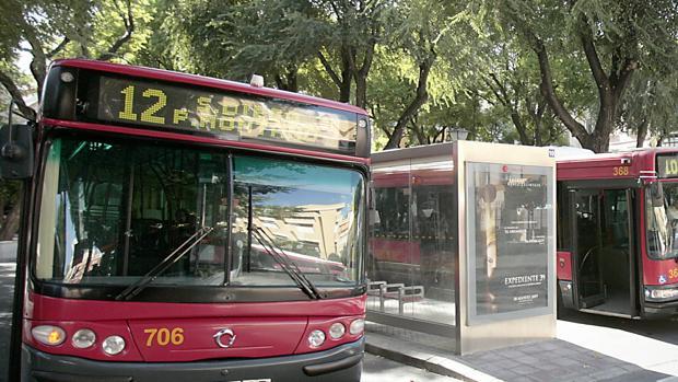 Autobuses de Tussam en parada de regulación en la Plaza Ponce de León