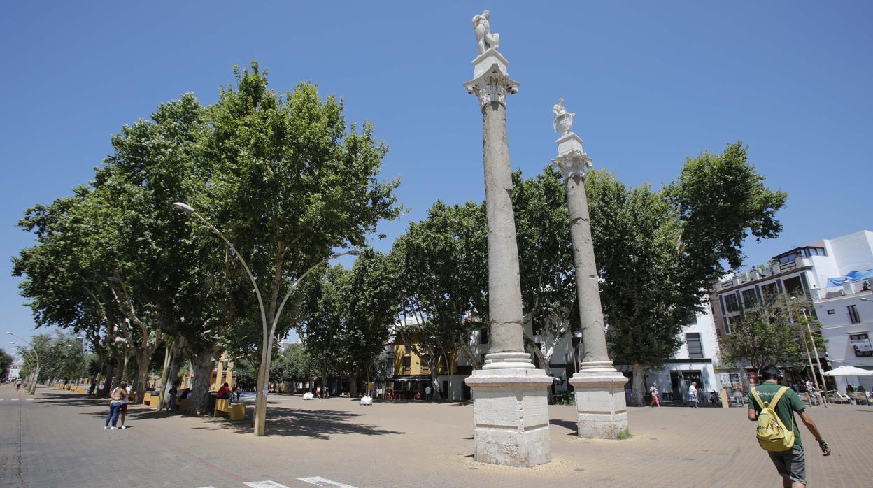 Alameda De Hércules De Gran Burdel De Sevilla A Barrio De
