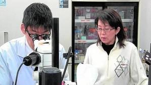 Primer trasplante de retina fabricado con piel para curar la ceguera