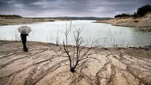 España, entre las regiones «críticas» en Europa por el cambio climático