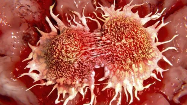 División de células cancerosas