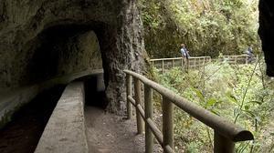 Los fascinantes y desconocidos túneles del agua en La Palma