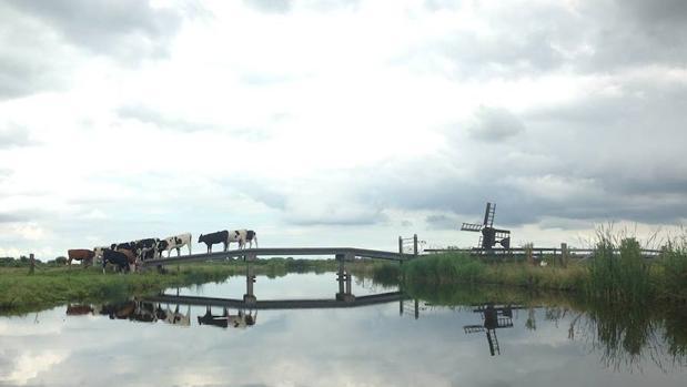 Casi la totalidad de la provincia de Holanda Septentrional se halla entre 1 y 4,5 metros por debajo del nivel del mar